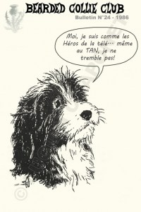 Carte potale N°48 : Bearded Collie Club BCC chiot Bearded Collie qui ne tremble pas au TAN (Test Aptitudes Naturelles) (1986)